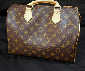bag, Hot, and Louis Vuitton image