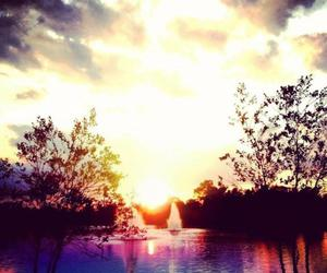 beautiful, sunrise, and swim image