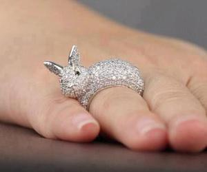 rabbit, ring, and cute image