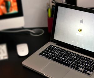 apple, mac, and new image