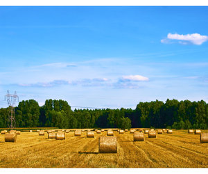 agriculture, August, and countryside image