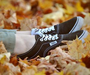 autumn, black, and vans image