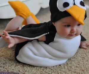 baby, penguin, and adorable image