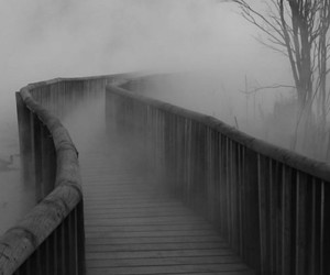 fog, bridge, and black and white image