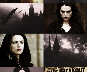 bellatrix lestrange image