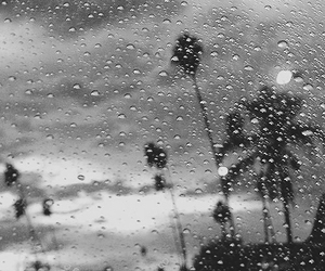 rain and photography image