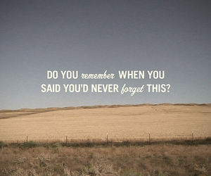 text, quote, and remember image