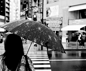umbrella, girl, and japan image