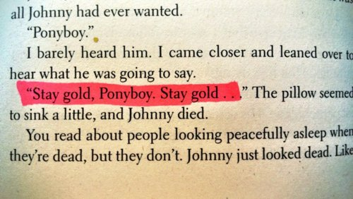 Stay Gold Tumblr Uploaded By Meaghan On We Heart It In the book, when ponyboy shanked the bottle in the fight with the soshes (i forget what the author calls them) johnny gets really concerned. stay gold tumblr uploaded by meaghan