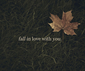 love, fall, and grass image