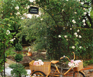 flowers, garden, and bicycle image