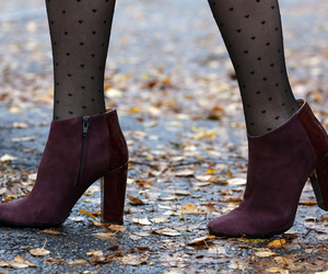 ankle boots, burgundy, and heart tights image