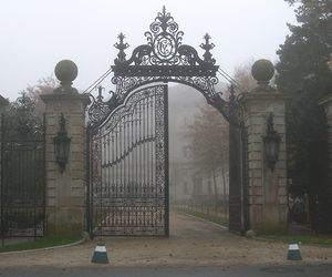 forest, gates, and vintage image