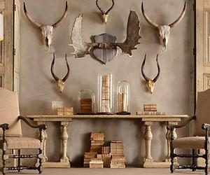 antique, antlers, and interior image