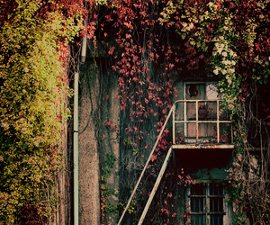 house, autumn, and nature image