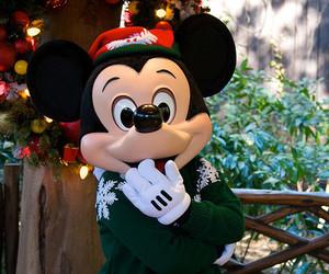 christmas, grass, and mickey image