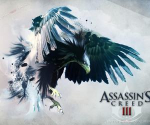 eagle, assassins creed 3, and assassin's creed iii image