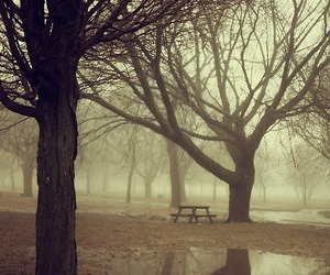 alone, fog, and lonely image