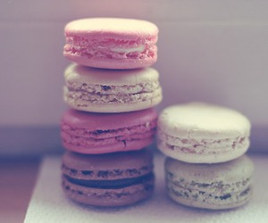 macaroons and photography image