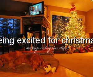 christmas, beautiful, and happiness image