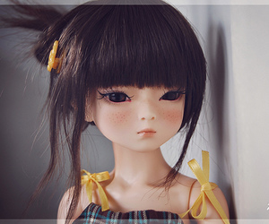 ball jointed doll and doll image
