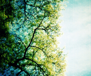 blue, spring, and helga olofsson image