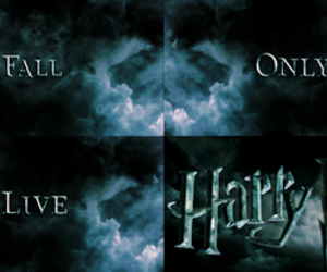 fuck yeah, deathly hallows, and harry potter image