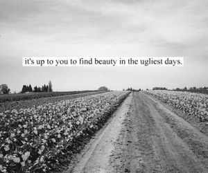 quote, beauty, and life image