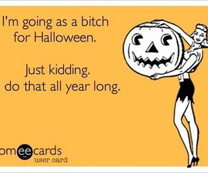 bitch, funny, and Halloween image