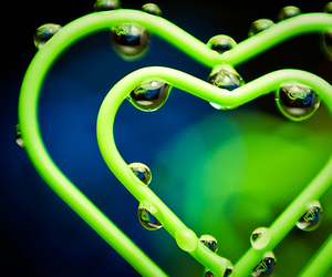 heart and green image