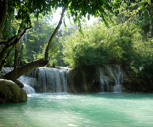nature, waterfall, and green image