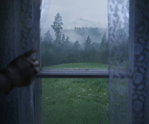 window, forest, and nature image