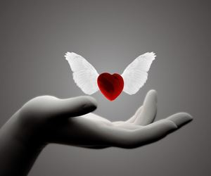 hand, heart, and wings image