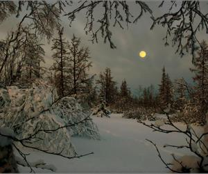 winter, snow, and moon image