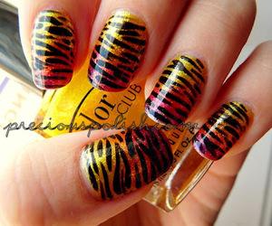 nails, pretty, and zebra image