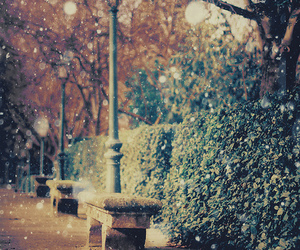 snow and photography image