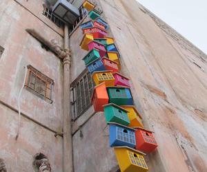 bird, birdhouse, and city image