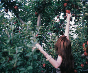 girl, apple, and photography image