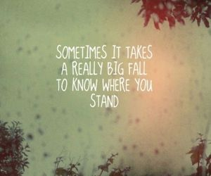 quote, life, and fall image