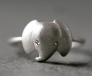 elephant, ring, and jewelry image