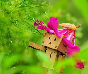 cute, flower, and boxman image
