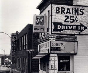 brains, donuts, and vintage image