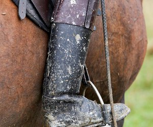 boot, stirrup, and horse image