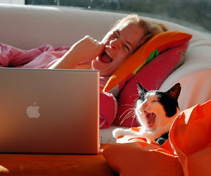 cat and apple image