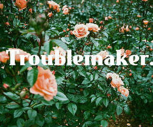 troublemaker image