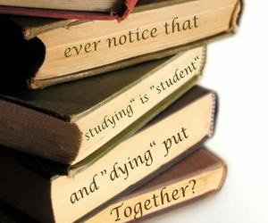 book, books, and dying image