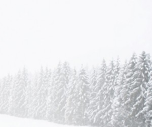 snow and white image