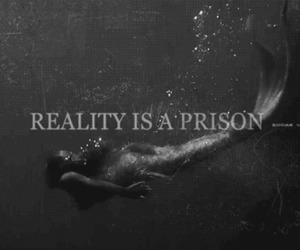 reality, prison, and mermaid image
