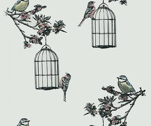 birds, wallpaper, and birdcages image