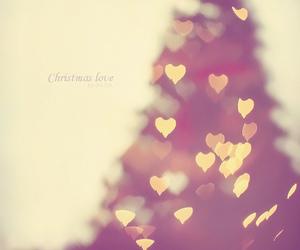 christmas, love, and lights image